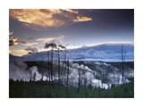 Norris Geyser basin with steam plumes from geysers  Yellowstone National Park  Wyoming