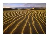 Sand dunes  Death Valley National Park  California