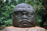 Giant Olmec Head at La Venta Park