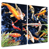 Koi Gallery-Wrapped Canvas