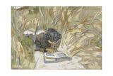 Woman Reading  C1909