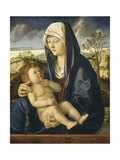 Madonna and Child in a Landscape  C1490-1500