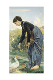 Young Woman Feeding a Duck  1871