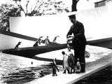 Lubetkin Penguin Pool  January 1934