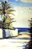 Road in Nassau  1898-99