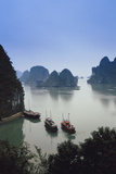Vietnam  Halong Bay  Tourist Boats Anchor at the Cave of Marvels
