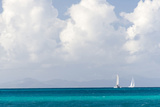 Bvi  Sailboats Navigate Caribbean Sea