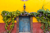 Decorative Doo on the Streets of San Miguel De Allende  Mexico