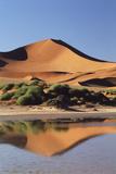 Namibia  Sossusvlei Region  Sand Dunes