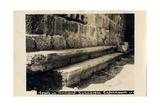 Seats in Byzantine Synagogue  Capernaum  Israel