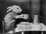 Bunny Coffee Break Papier Photo