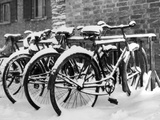 Snow-Covered Bicycles