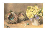 Spring Flowers and Birds' Nests  C1830