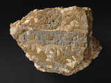 Mosaic Fragment  Ad 60