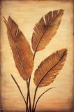 Treasured Palm II