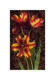 Decorative Tulips I