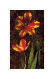 Decorative Tulips II
