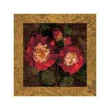 Red Camellias II