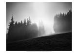 Misty Weather III