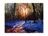 Sunset on Snow  2010