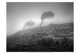 Misty Weather VI