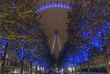 Trees in London Eye Park