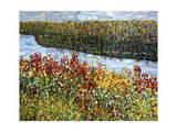 The River Giclée par Mandy Budan