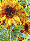 Summer in the Garden Giclée par Mandy Budan