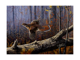 Windfall Glider - Ruffed Grouse