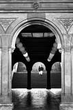 Bethesda Couple  Central Park  NYC