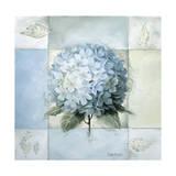 Blue Hydrangea Study 2
