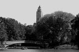 Central Park Bridge  NYC II