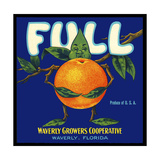 Full Florida Citrus