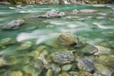 Brook Impression near Thunder Creek Fallswith Rocks