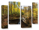 Blue Hen Falls  4 Piece Gallery-Wrapped Canvas Staggered Set