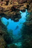 Diver Seen through Opening in Coral Reef