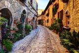 Street in Spello  Italy