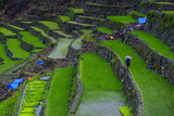 Batad Rice Terraces  Part of the UNESCO World Heritage Site of Banaue  Luzon  Philippines