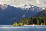 Sailing on Lake Wanaka  Wanaka  Otago  South Island  New Zealand  Pacific