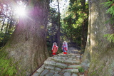 Pilgrims on Daimon-Zaka Nachi Tokaido Pilgrimage Route  Wakayama Prefecture  Honshu  Japan  Asia