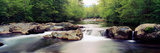 Middle Prong of Little Pigeon River  Great Smoky Mountains National Park  Sevier County