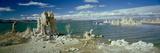 Tufa Rock Formations in a Lake  Mono Lake  Mono Lake Tufa State Reserve  California  USA