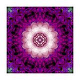 Purple Blossom Light
