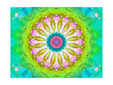 Happy Mandala II
