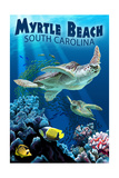Myrtle Beach  South Carolina - Sea Turtles Swimming