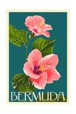 Bermuda - Pink Hibiscus