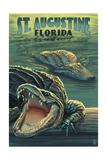 St Augustine  Florida - Alligator Scene
