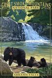 Abrams Falls - Great Smoky Mountains National Park  TN
