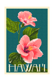 Hawaii - Pink Hibiscus Flower