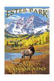 Estes Park  Colorado - Mountains and Elk